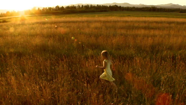 AERIAL Little Girl Running In The Meadow video