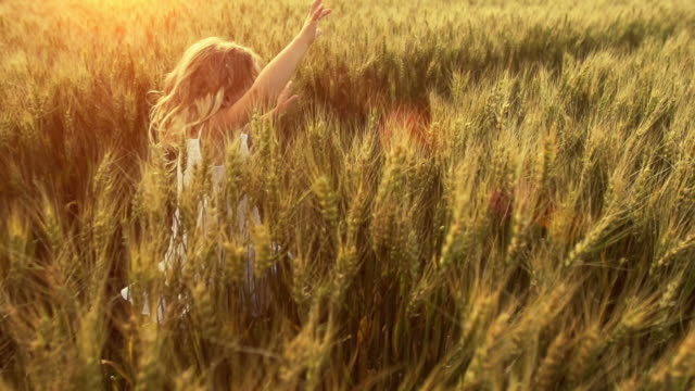 Little girl runs through wheat field video