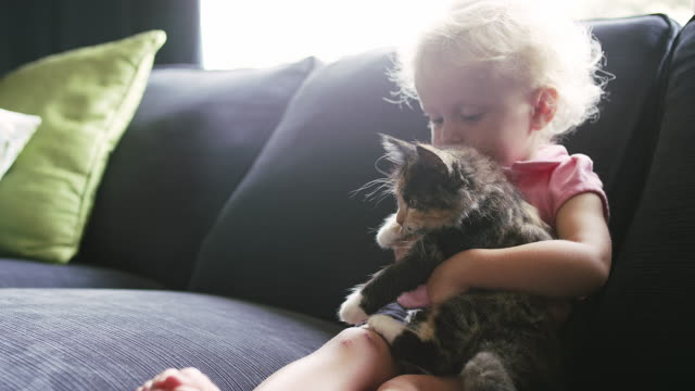 A little girl sitting on the couch holding a kitten and giving it a hug video