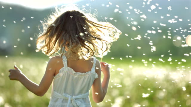 SUPER SLO-MO Little Girl Surrounded With Dandelions HD1080p: Super Slow Motion shot of a little girl twirling in the middle of the meadow,  surrounded with many dandelion seeds flying in the air. dress stock videos & royalty-free footage