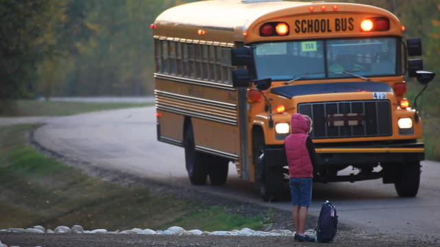 little girl waiting for school bus - school buses stock videos and b-roll footage