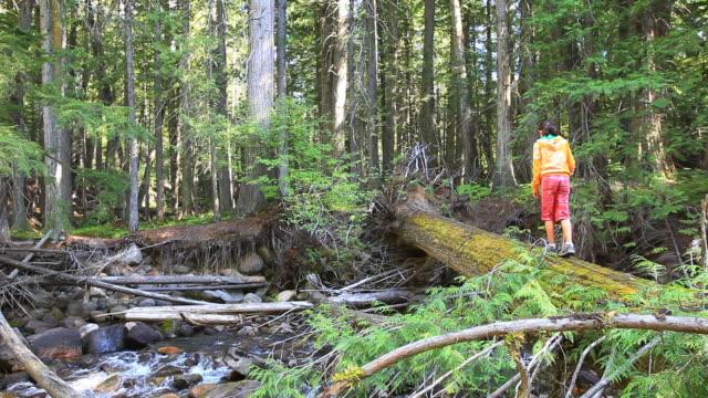 Little Girl walking across log bridge in forest video