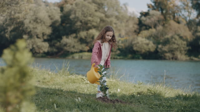 Little girl watering a plant video