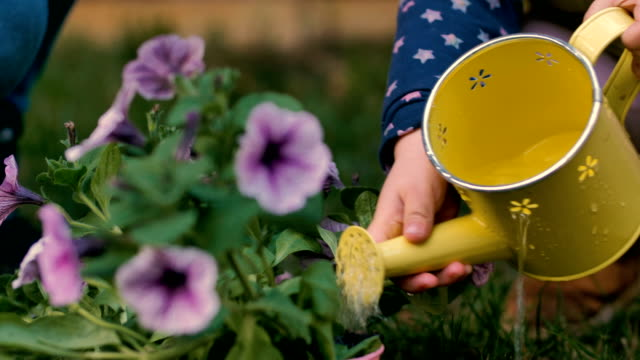 Little girl watering flowers in the garden