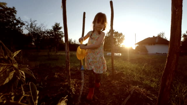Little Girl Watering Organic Tomatoes,Sunset,Rural Scene. video