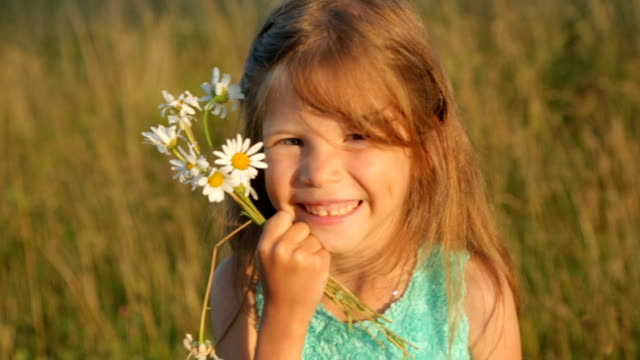 little girl with camomile flowers by sunset light - нивяник стоковые видео и кадры b-roll