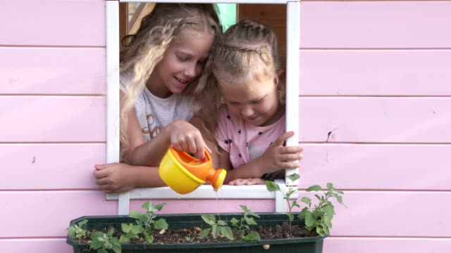 Little girls have fun together watering flowers in window box on pink playhouse video