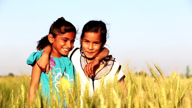 Little Girls Laughing HD1080p: Two Little Girls Standing in the Wheat Field and Laughing Together. indian family stock videos & royalty-free footage
