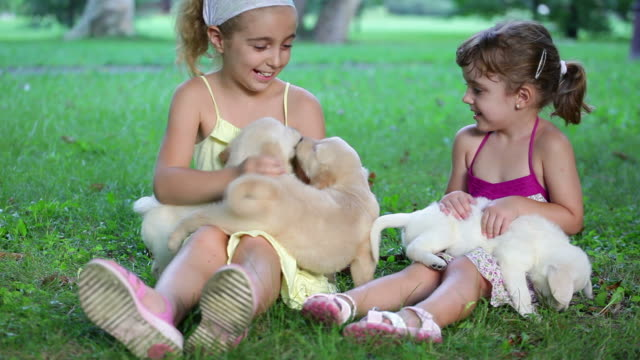 Little Girls playing with puppies video