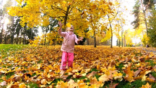 vídeos de stock e filmes b-roll de little laughing pretty girl throws yellow leaves in autumn park - setembro