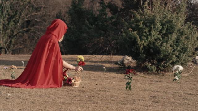 vídeos de stock e filmes b-roll de little red riding hood collecting flowers - capuz