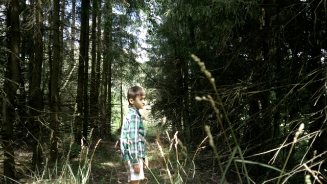 vídeos de stock e filmes b-roll de little scared caucasian boy in the forest is frightened and runs, chase after a frightened boy - criança perdida