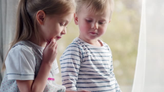 Little Siblings Playing on Tablet Tilt up of cute little boy and his elder sister sitting by the window at home and using digital tablet sister stock videos & royalty-free footage