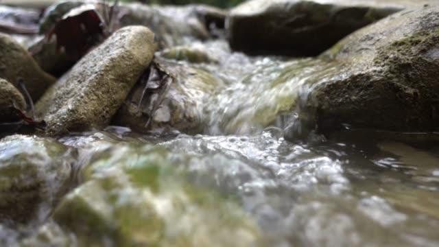 küçük akarsu - kayaç stok videoları ve detay görüntü çekimi
