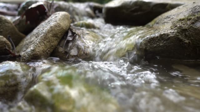 little stream - ручей стоковые видео и кадры b-roll