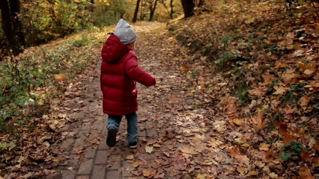 Little toddler boy running in colorful autumn park