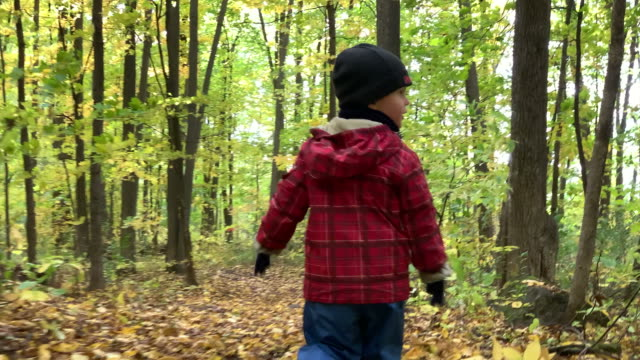 vídeos de stock e filmes b-roll de little toddler exploring forest on hiking trail in autumn - criança perdida