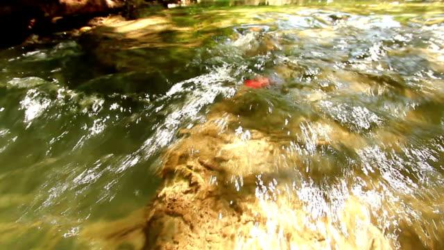 Little Waterfall video
