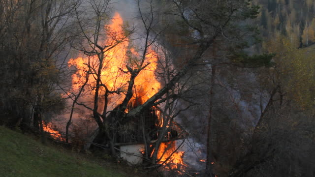 orman yangında yanan küçük ahşap ev - ahır stok videoları ve detay görüntü çekimi