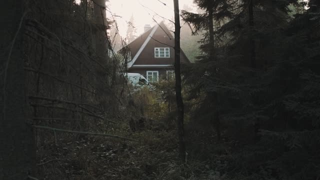 Little wooden house cabin in deep woods, warm light Little wooden house cabin with parked white car in deep dark woods, warm light sunny day mansion stock videos & royalty-free footage