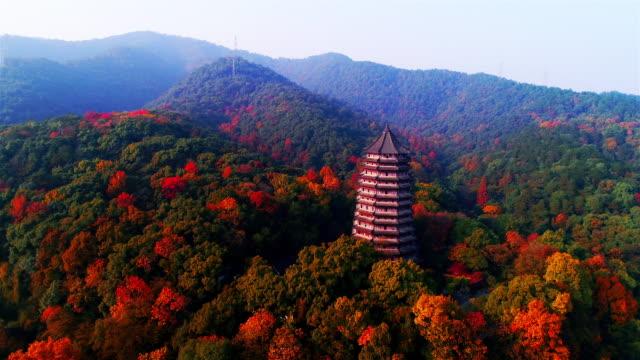 liuhe-pagode im herbst gedreht von drohne - geschichtlich stock-videos und b-roll-filmmaterial
