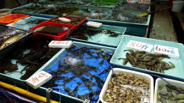 chun yeung ıslak pazar, bir su tankında canlı karides - islak stok videoları ve detay görüntü çekimi