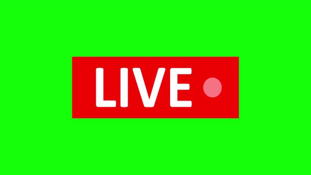 vídeos de stock, filmes e b-roll de sinal de transmissão ao vivo. símbolo vermelho, botão de transmissão ao vivo, transmissão, emblema de transmissão online. canal alfa - live