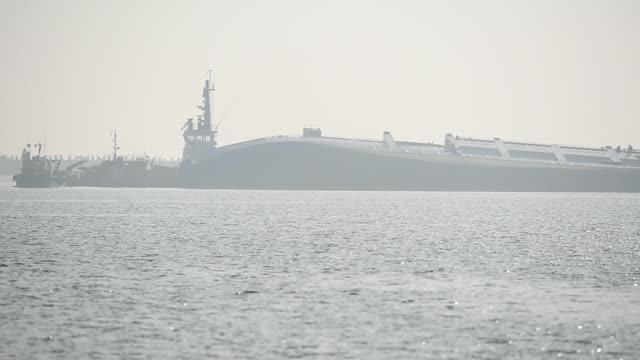 boskap lastfartyg ses kapsejsade nära en hamn - skrov bildbanksvideor och videomaterial från bakom kulisserna