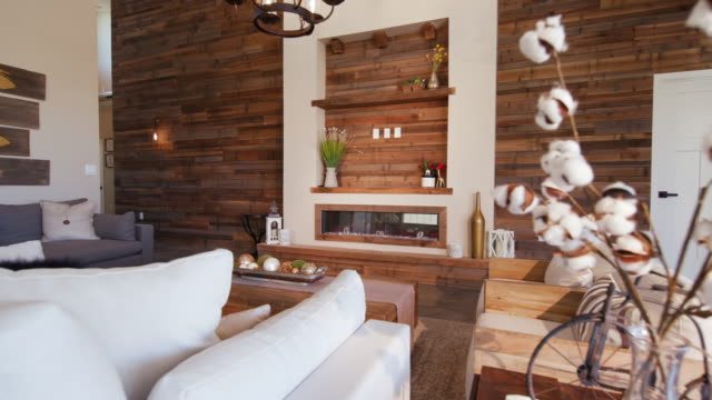 vídeos de stock e filmes b-roll de living room reveal wood wall from behind plant - sala