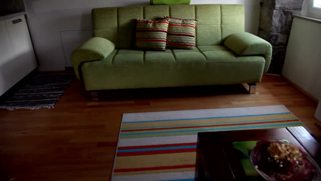 HD CLIP: Living room video