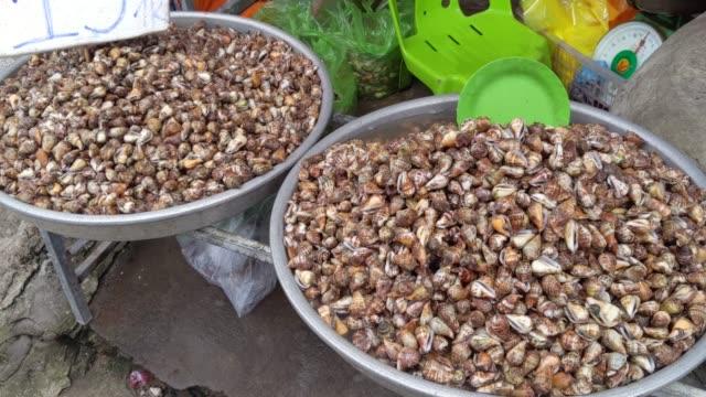 Living snails for sale on street Vietnam