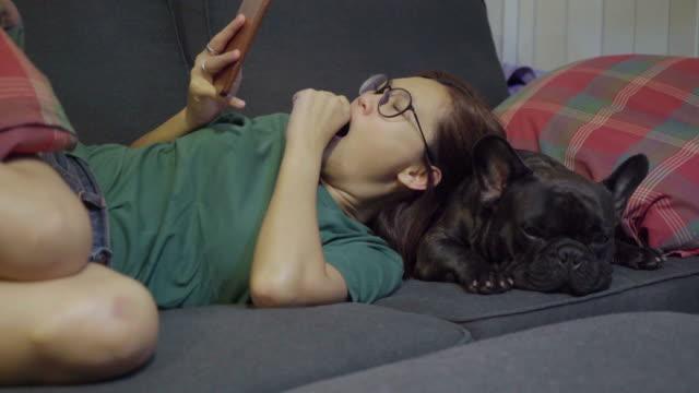 ペットとの暮らし - 怠惰点の映像素材/bロール