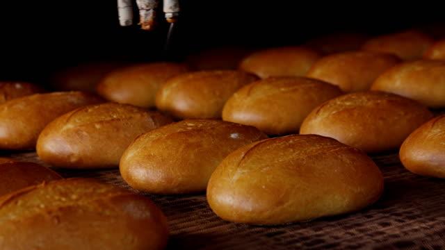 loaves of fresh crusty bread on tray under sprinkler - węglowodan jedzenie filmów i materiałów b-roll