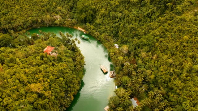 Loboc river in the rainforest Philippines, Bohol video