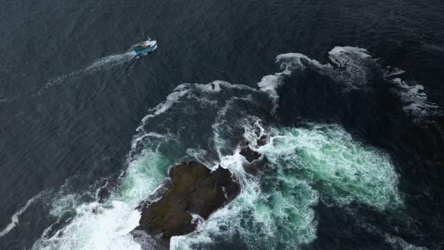 hummerfiske på atlant kusten - fiskebåt bildbanksvideor och videomaterial från bakom kulisserna