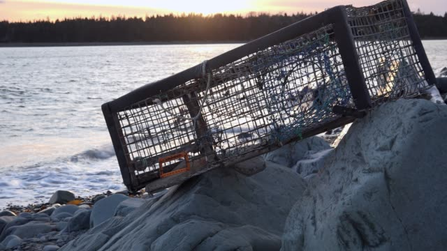 lobster trap - oceano atlantico video stock e b–roll