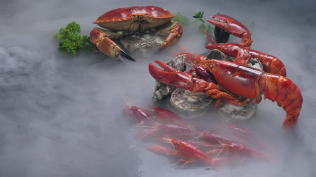 lobsters with fresh parsley, dill  , lemon, garlic,red chili   and pepper beans with tope view - crostaceo video stock e b–roll