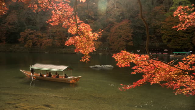 vídeos de stock e filmes b-roll de local boat in katsura river amid autumn leaf forest at arashiyama - cidade de quioto