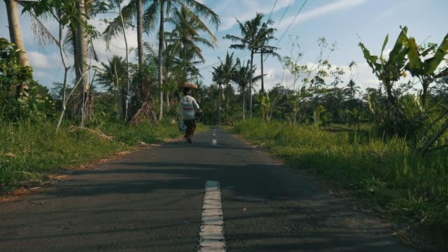 local woman in balinese outfit carrying an offering walking on the village road surrounded with palm trees and jungle tracking shot - индонезия стоковые видео и кадры b-roll