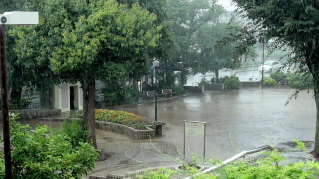 vídeos y material grabado en eventos de stock de pan, localizado lluvia torrencial. - lluvia torrencial