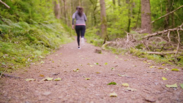 Lockdown Shot Of Fit Woman Running On Forest Trail Lockdown shot of fit woman running on forest trail. Surface level shot of sporty female is jogging in woodland. She is representing healthy lifestyle. 4K Resolution. lockdown viewpoint stock videos & royalty-free footage