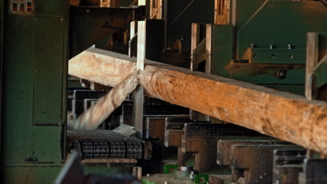 Log being cut by a vertical saw in a lumber mill video