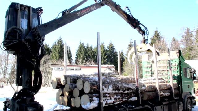log forwarder unloading piles of logs from the truck - skylift bildbanksvideor och videomaterial från bakom kulisserna