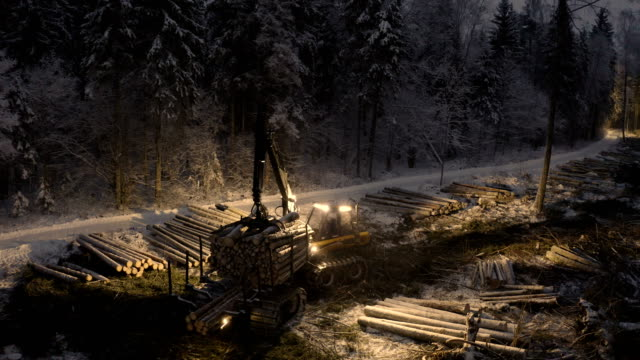 A log grappler moving forward in the forest Virumaa Estonia 2019 March 08: A log grappler moving forward in the forest carrying big logs on the back on a snowy night construction equipment stock videos & royalty-free footage