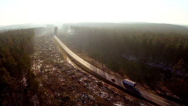 Logging clear cut and road - Aerial shot. video
