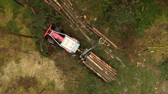 AERIAL Logging truck lifting cut felled logs and loading them on stacked tractor video