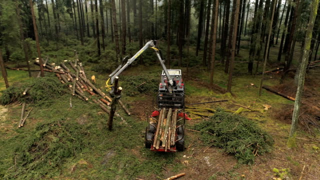 AERIAL CLOSE UP Logging truck lifting trunks and loading them on stacked tractor video
