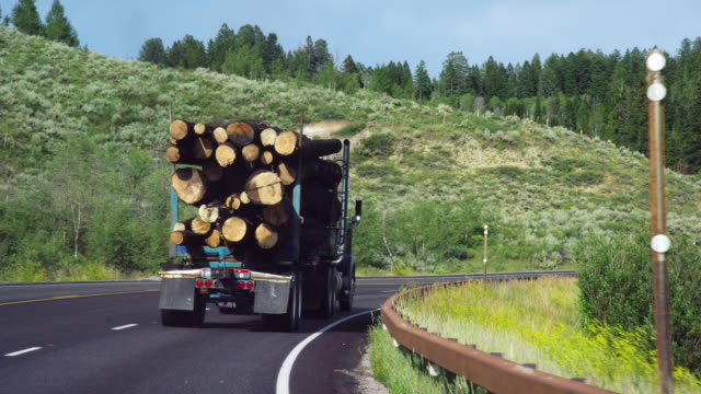 A Logging Truck with a Full Load Drives Slowly along a Highway in the Mountains of Wyoming on a Sunny Day