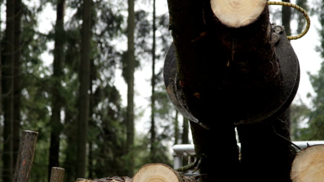 CLOSE UP: Logging truck's swing arm lifting and loading pile of tree trunks video
