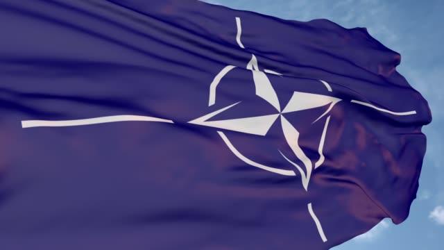 logo of the nato military bloc - quartiere generale video stock e b–roll